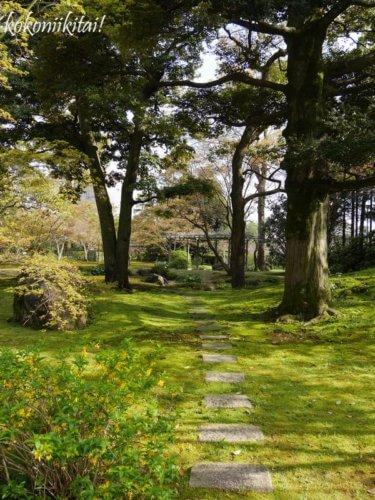 京都、城南宮